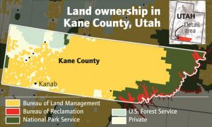 Kane County Land Ownership Map 1