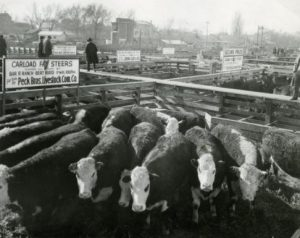 Ogden Stockyards BW 2