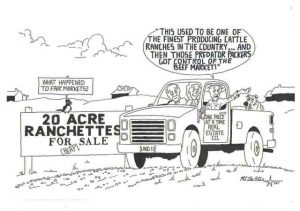 20 Acre Ranchettes 1