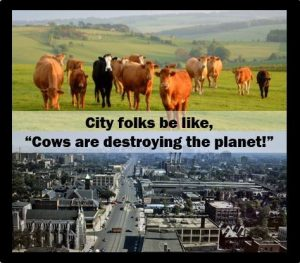 Cows City Folks 1