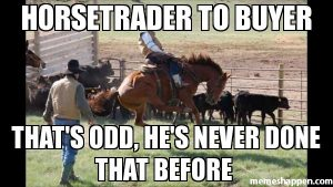 Horse Trader to Buyer 1