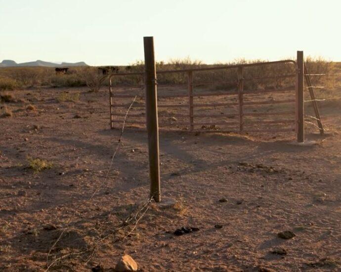 screen shot from border rancher video